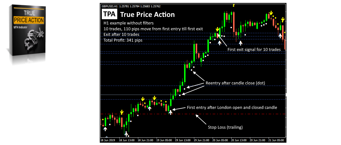 tpa true price action indicator mt4 mt5